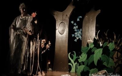 bosco-magico-3